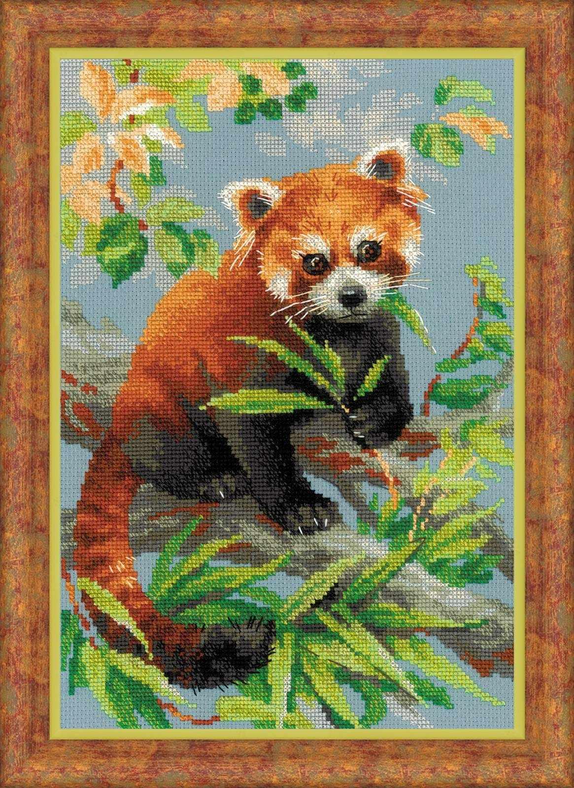 """1627 """"Красная панда"""""""