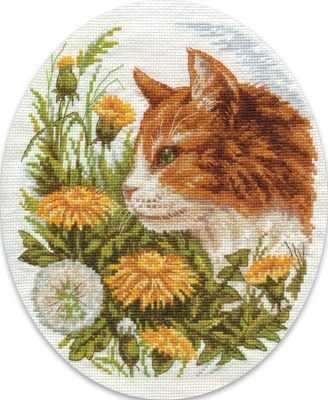 8-127 кот в одуванчиках