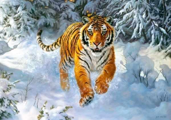 B-52400 Амурский тигр