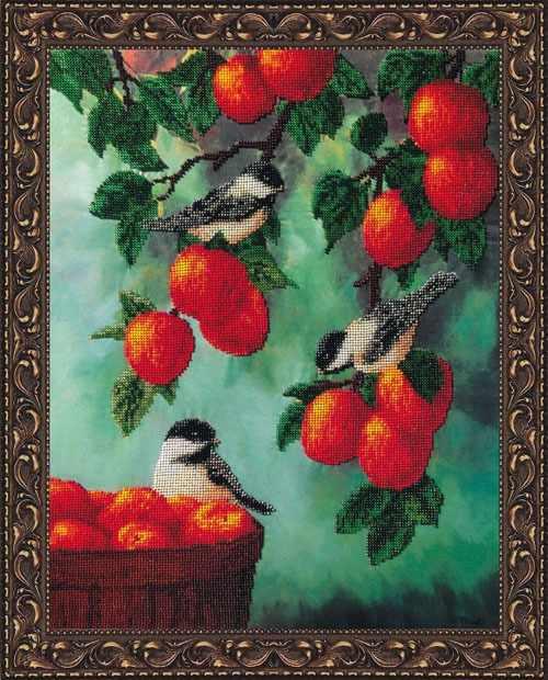 КВ705 Яблочный спас