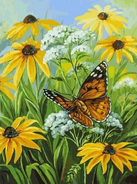 153-AS Цветочная поляна - раскраска (Белоснежка)