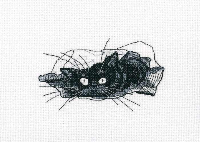M667 - Среди черных котов