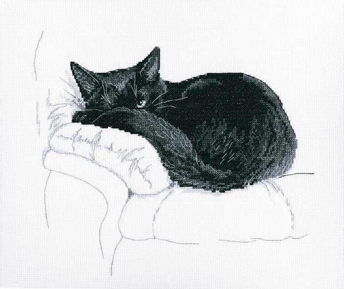 m668 реди черных котов
