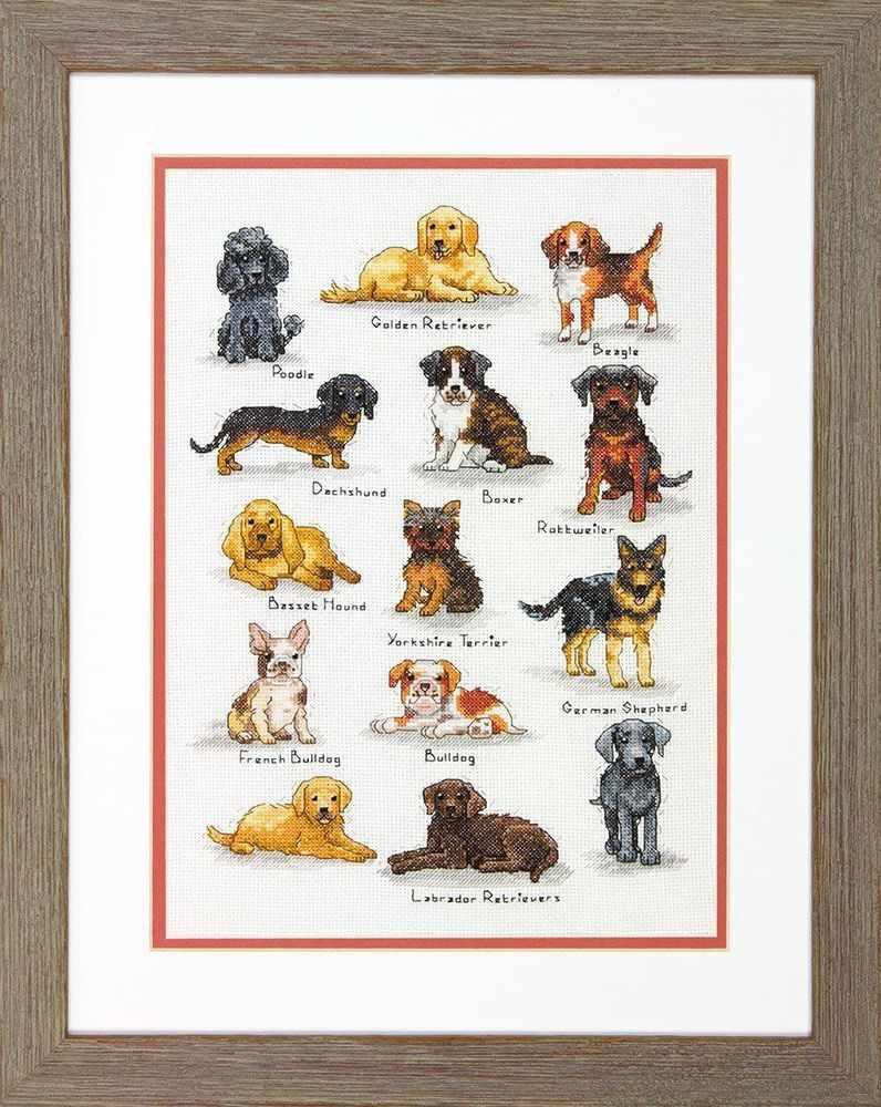 35353 DMS Породы собак