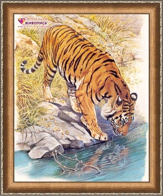 Алмазная вышивка Тигр у реки (АЖ-1523) - картина стразами