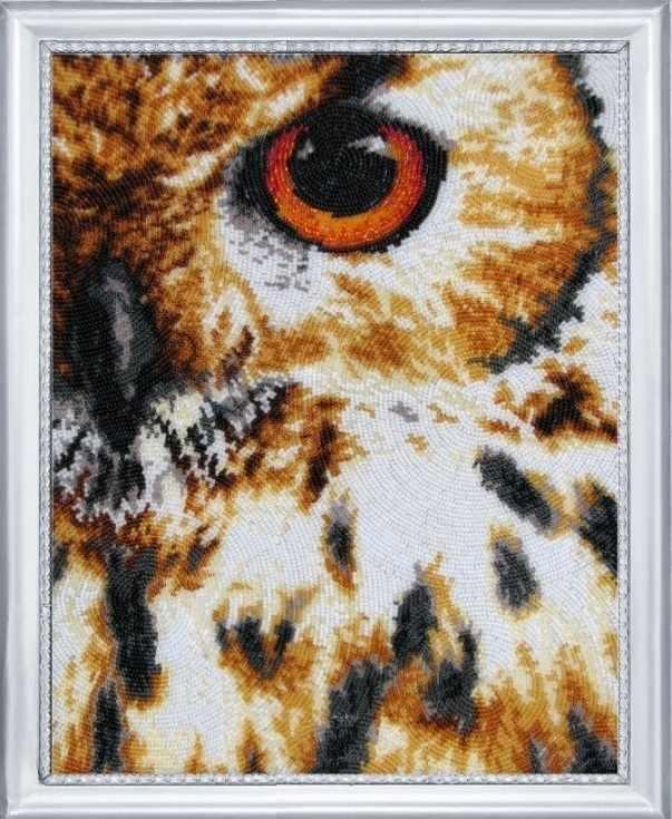 530 Око совы - Butterfly