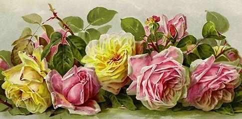 F-286 (Винтажные розы) - мозаика Милато