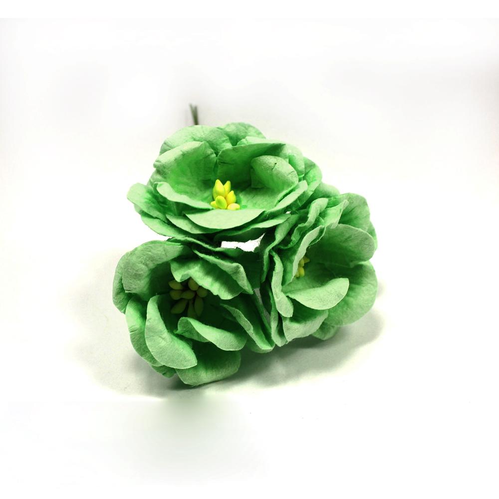 FD3133166 Цветы Магнолии мятные