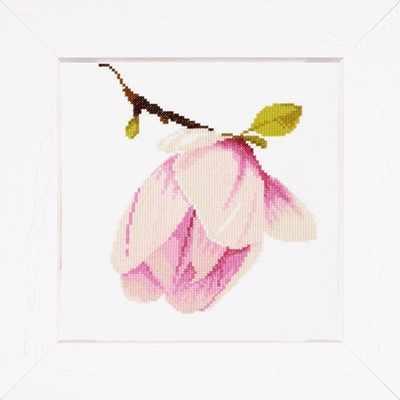 PN-0008161 Растущий цветок (Lanarte)