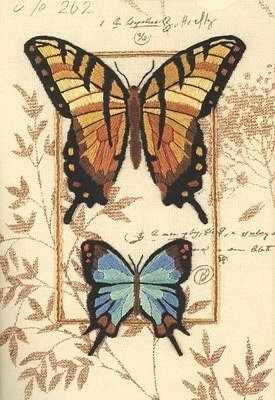 6234-DMS Дуэт бабочек