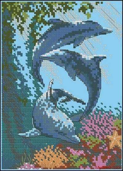 6817-DMS Три дельфина