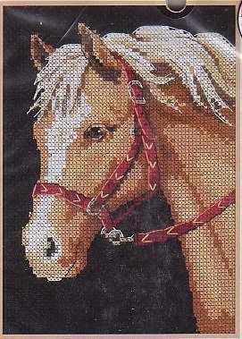 6974-DMS Любимый пони