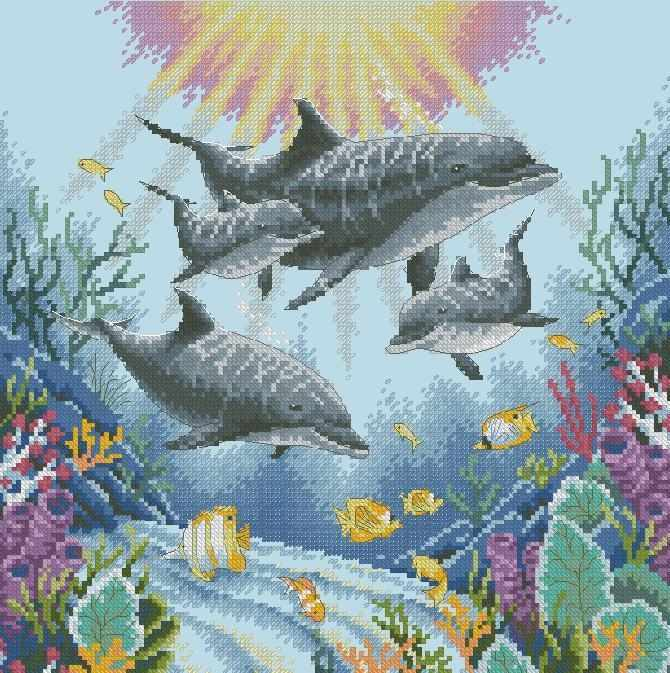 35186-DMS Утро дельфинов