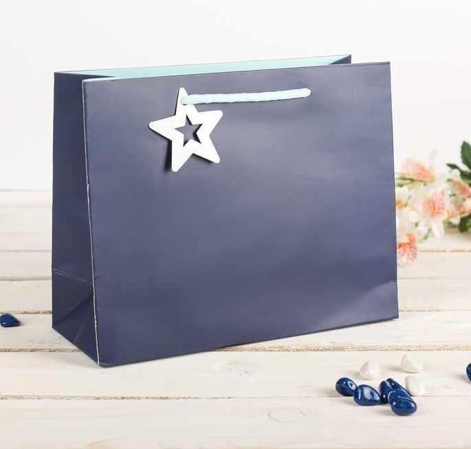 2749669 Пакет подарочный, синий