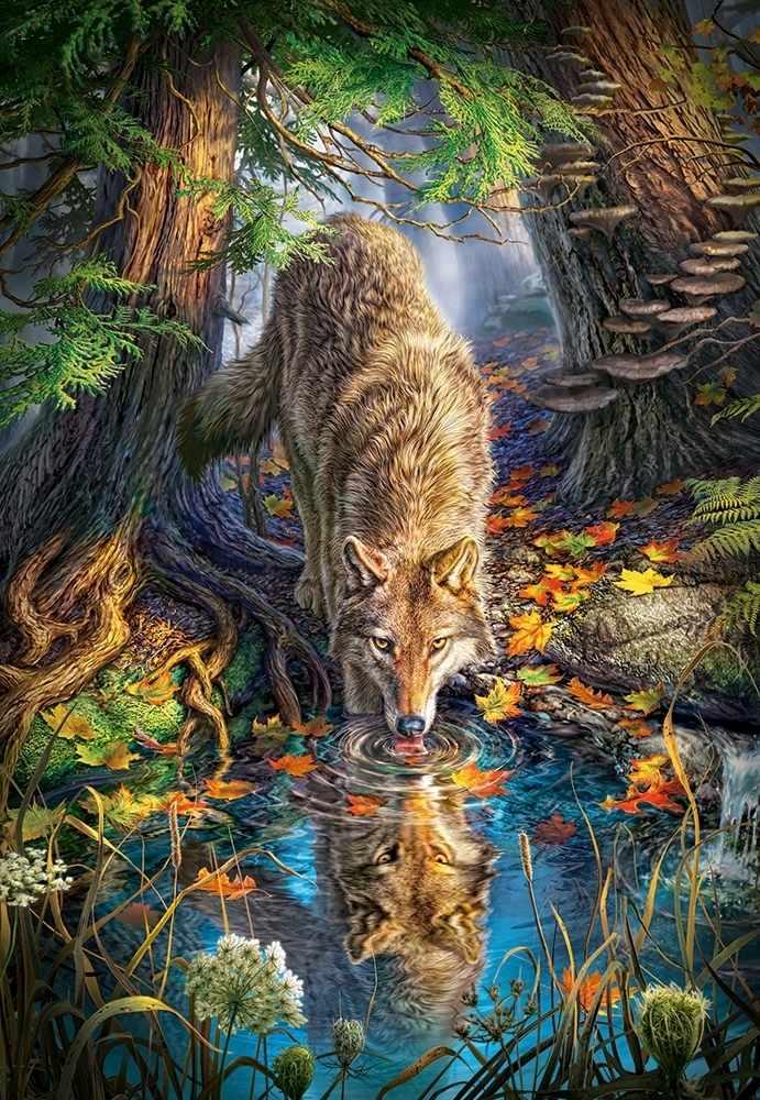 C-151707 Волк в дикой природе, 1500 деталей