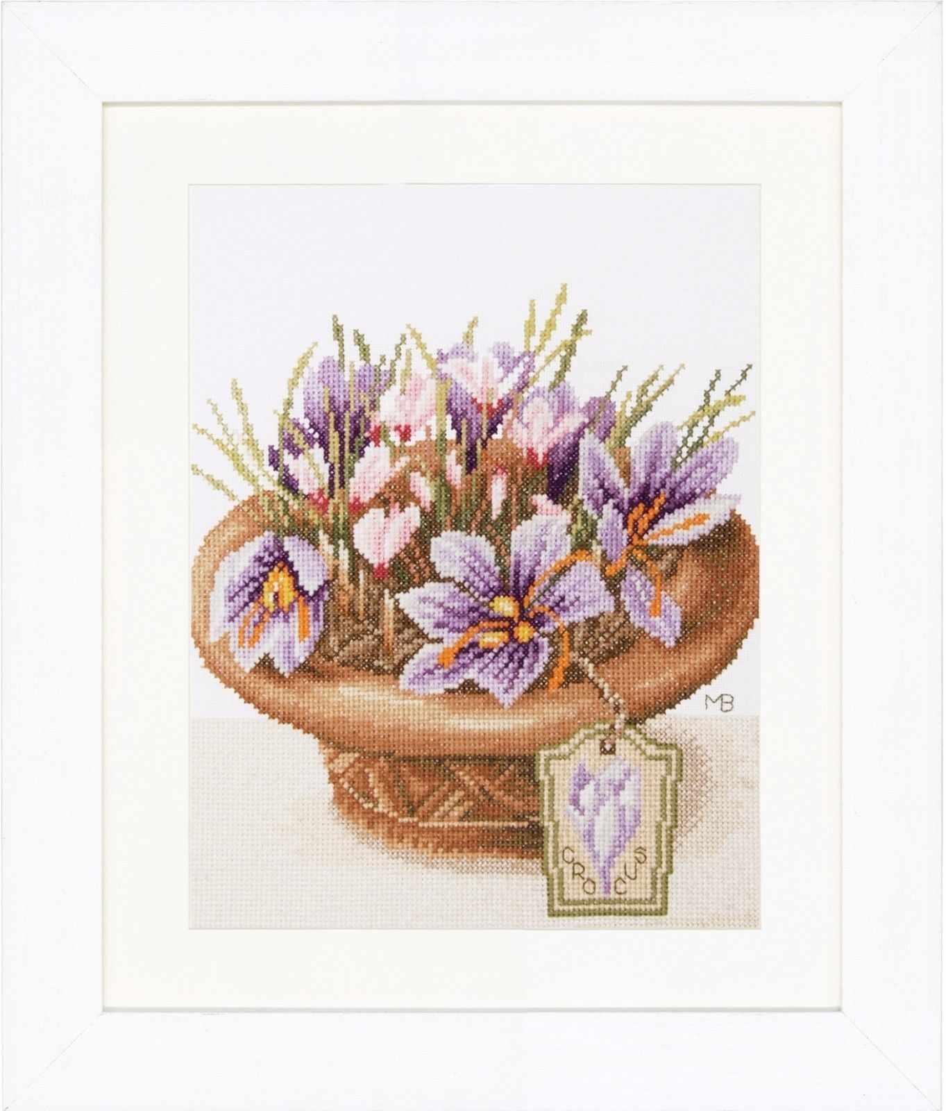 PN-0168601 Crocus Flowers (Lanarte)