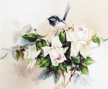 B2316 Birdie