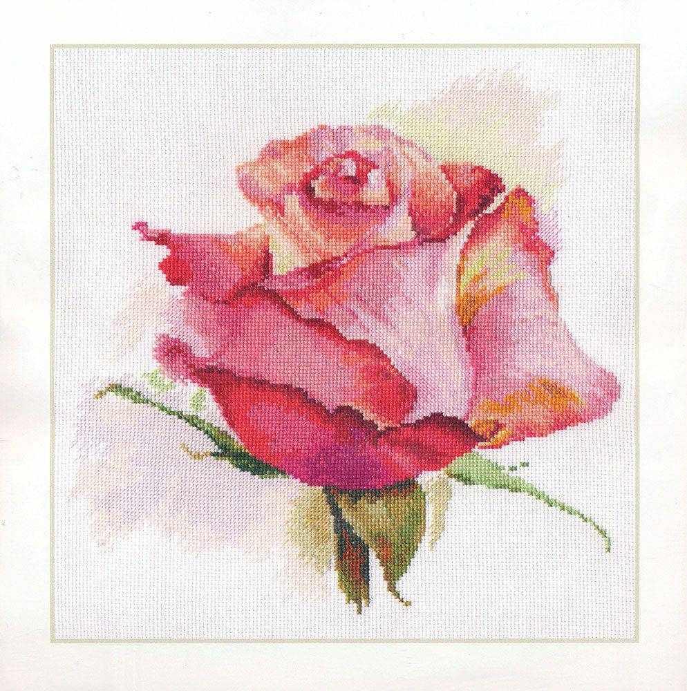 2-39 Дыхание розы. Очарование