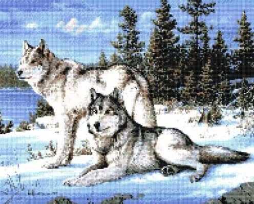 900833 Пара волков