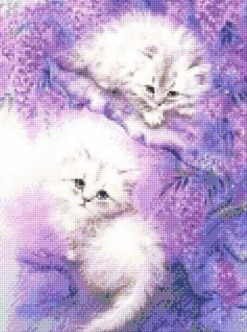 901901 Два котенка