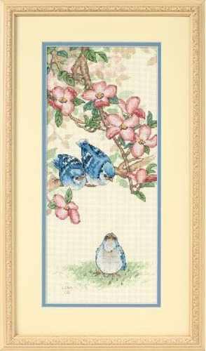 13728-DMS Птенцы голубой сойки