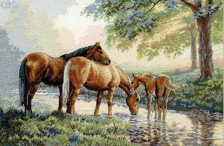 35174-DMS Лошади у источника
