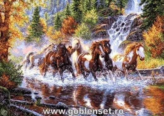 1052Cascada cailor