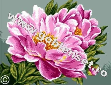 0935 Розовые пионы