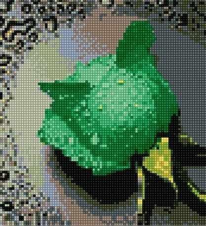 71003-09 Зелёная роза