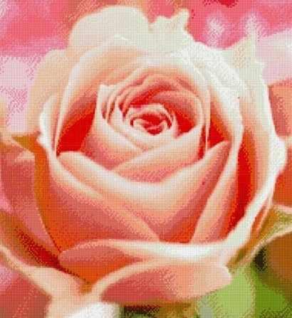 71003-32 Розовый бутон