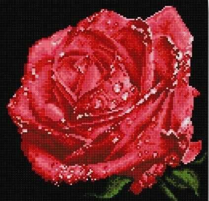 71003-56 Алая роза
