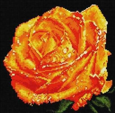 71003-57 Рыжая роза