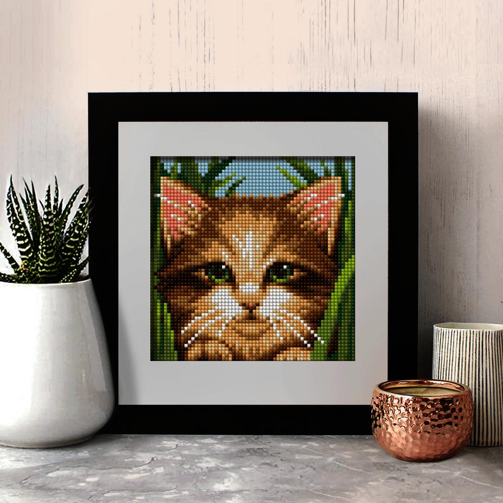 Зеленоглазый котенок (АЖ-1640) - картина стразами
