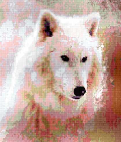 Алмазная вышивка 50008 Белый волк