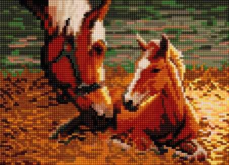 50081 Лошадь с жеребенком