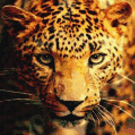 50137 Портрет леопарда
