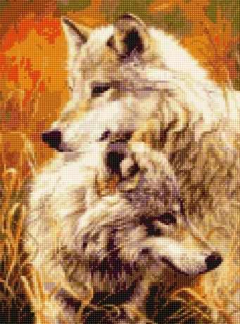 50145 Нежность волков
