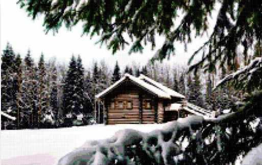 50158 Дом в зимнем лесу