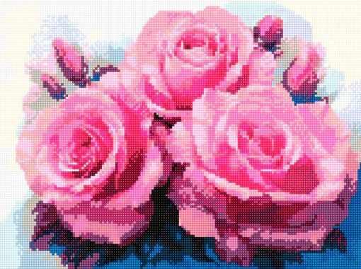 900921 Прекрасные розы