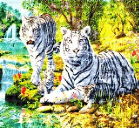 900501 Белые тигры