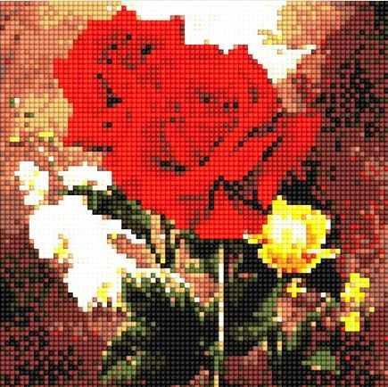 900601 Красные розы