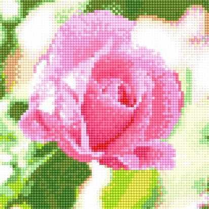 900611 Роза