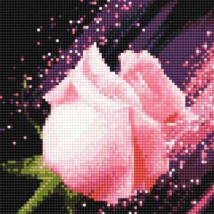 900641 Розовая розочка