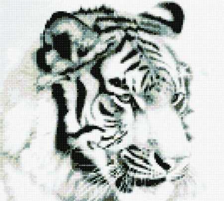 901001 Белый тигр