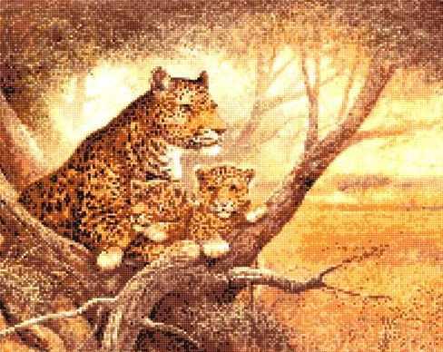 907132 Леопард с детенышем