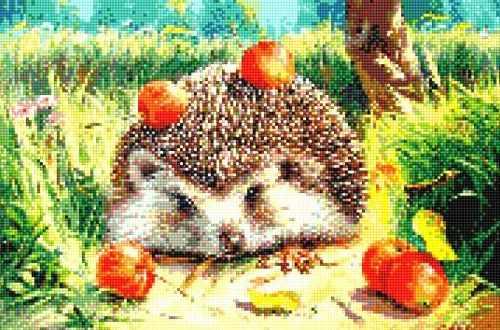 911901 Ёжик с яблоками