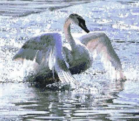 913201 Изящный лебедь