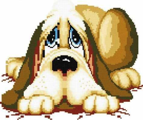 71029-10 Сонный пёс