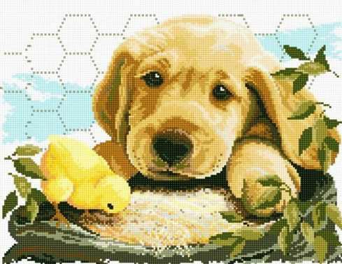 71029-14 Цыплёнок и щенок