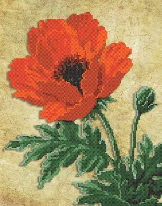 ММЦ-001 Красный мак - схема для вышивания (MOSMARA)